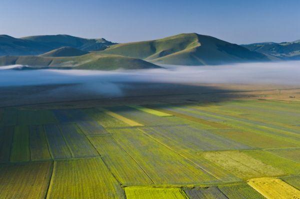 Banchi di nebbia mattutini si attardano sui campi del Piano Grande di  Castelluccio di Norcia, parte del Parco nazionale dei Monti Sibillini.