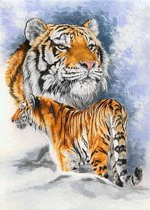 Tiger Painting - Forceful by Barbara Keith