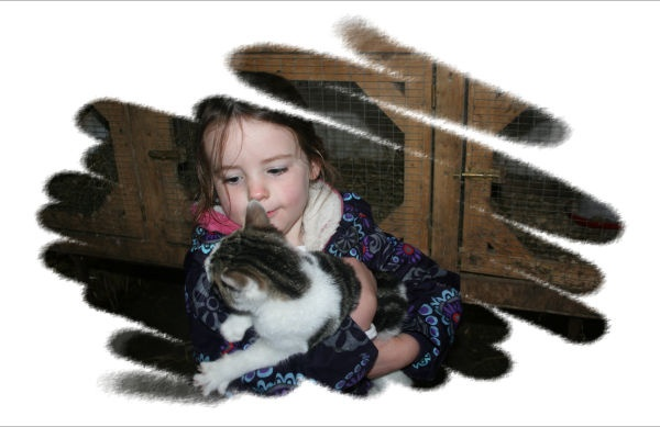 Cuddling the kitten