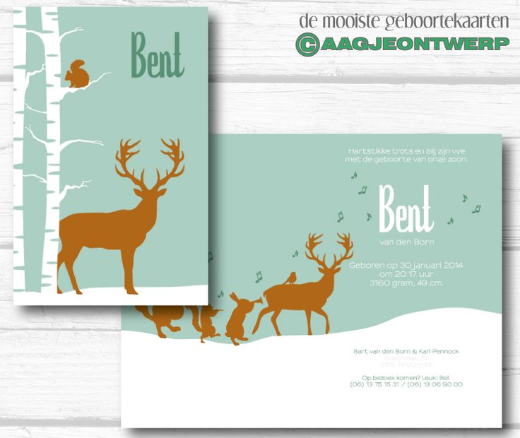 geboortekaart, birth announcement, winter, hert, sneeuw, bos, deer, snow, retro, aagjeontwerp, www.aagjeontwerp.nl
