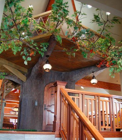 80 best Treehouse images on Pinterest | Treehouse, Home and Ideas