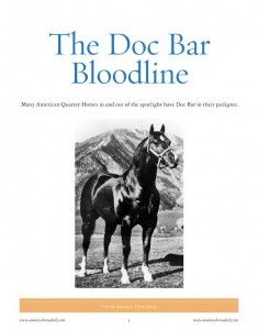 doc bar bloodline book. very interesting to follow