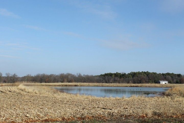Beautiful 22.6 acres with a 3 acre pond. Build your dream home here!!  Located conveniently on Herrin Rd....