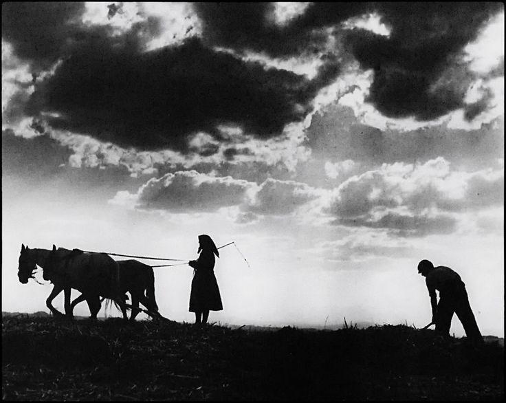 Αλωνισμός με αδοκάκι (1949)