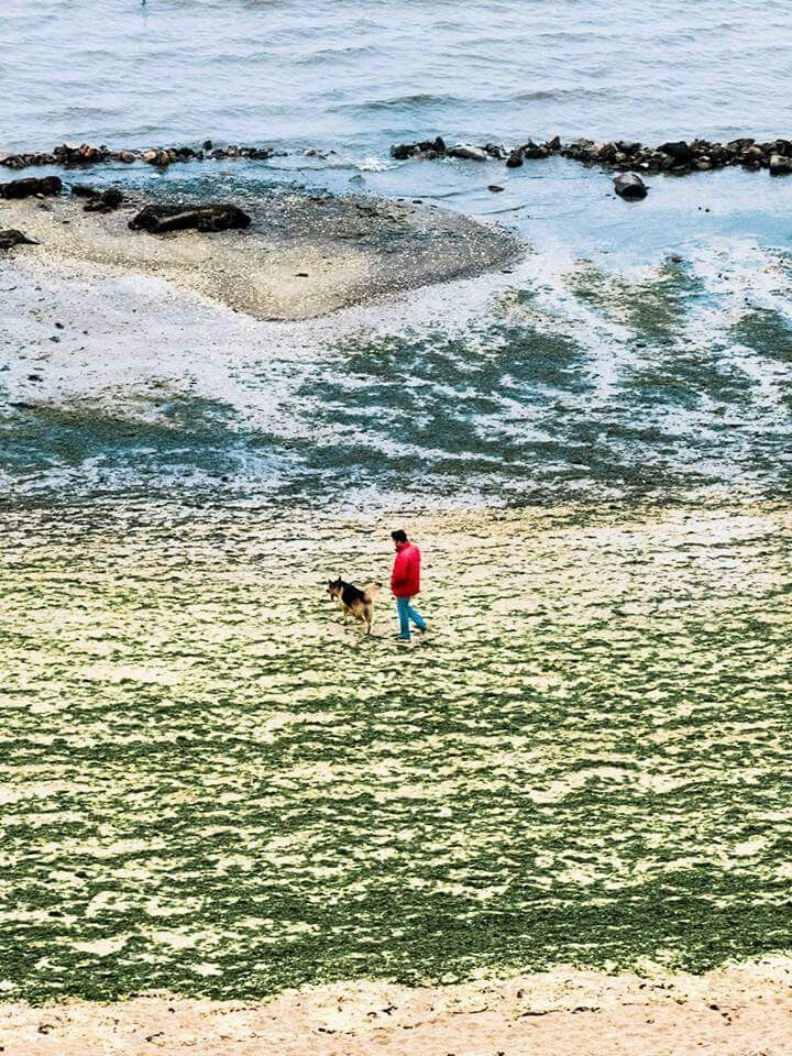 Playa de Compostela