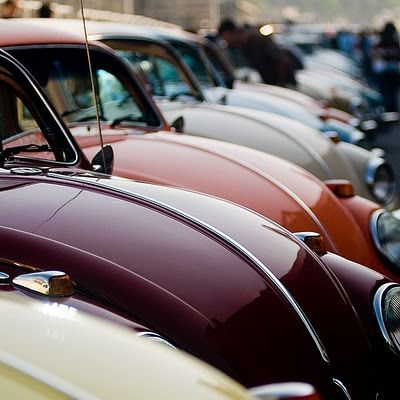 Volkswagon bugs.  Cool colors.