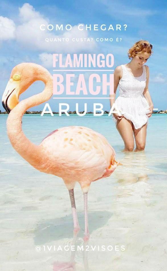 4f96f5090feb Quanto custa e como é a Flamingo Beach em Aruba? E a Renaissance Island em