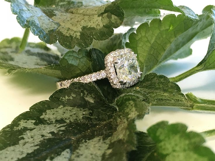 We used a cushion cut diamond  to create this halo ring.