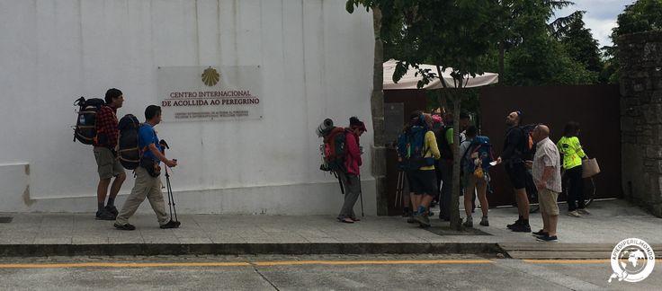 Sono 39.079 i pellegrini che nel mese di giugno sono arrivati a Santiago e hanno ritirato la Compostela presso la nuova Oficina del peregrino.