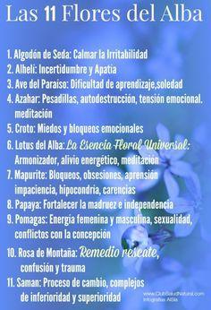 Esencias de Flores del Alba Damas Aureas Aplicaciones - Club Salud Natural