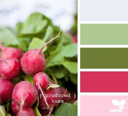 Creating Palettes - COMPLEMENTARY red and green.  COMPLEMENTARY = primary color + 2 other colors next to other primary color which is opposite the first primary color.