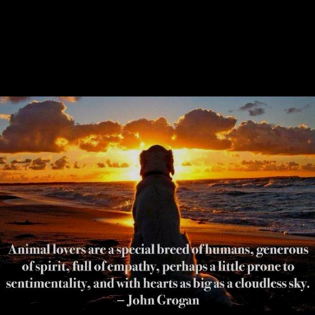 I so am an animal lover