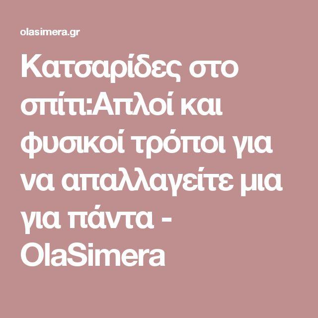 Κατσαρίδες στο σπίτι:Απλοί και φυσικοί τρόποι για να απαλλαγείτε μια για πάντα - OlaSimera