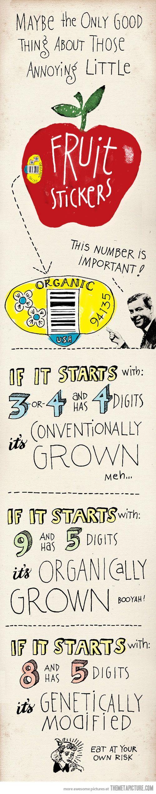 Язык и статистика 1971
