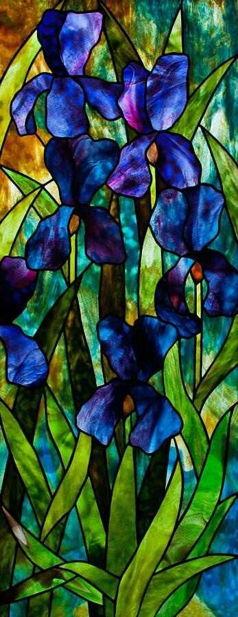 Tiffany stained glass                                                                                                                                                                                 Plus