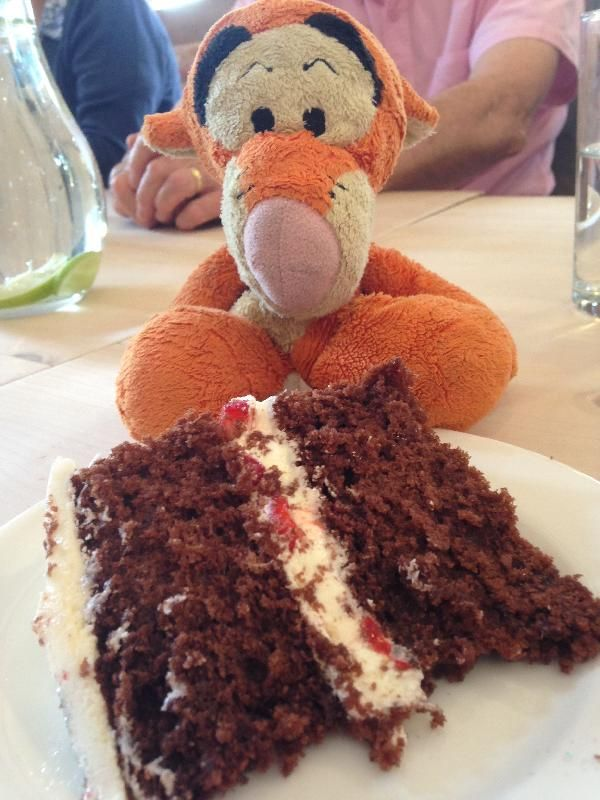 He's been found! YAY!! ------ Lost on 30 Jul. 2015 @ Eden Walk Kingston Upon Thames Surrey, KT1 1BL. My daughter is heartbroken as she has lost her Tigger (he even has a pager tag tied to him but the blooming thing is broken!!) We think he was lost between Primark and Eden Walk in Kingston Visit: https://whiteboomerang.com/lostteddy/msg/eee3gb (Posted by Emma on 30 Jul. 2015)