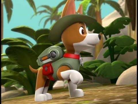 ᴴᴰ Paw Patrol Full Episodes 2016 Tracker Joins The Pups