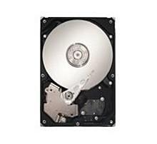 Seagate DB35 Series ST3160215ACE 160 GB 3.5-inch Internal Hard Drive - 7200 RPM - 2 MB Cache - ATA-100