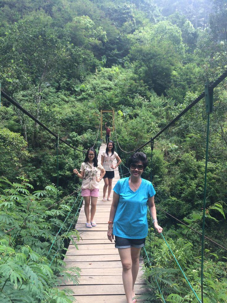 Jembatan Taman Hutan Rakyat Forest Park Bandung Indonesia  #bridge