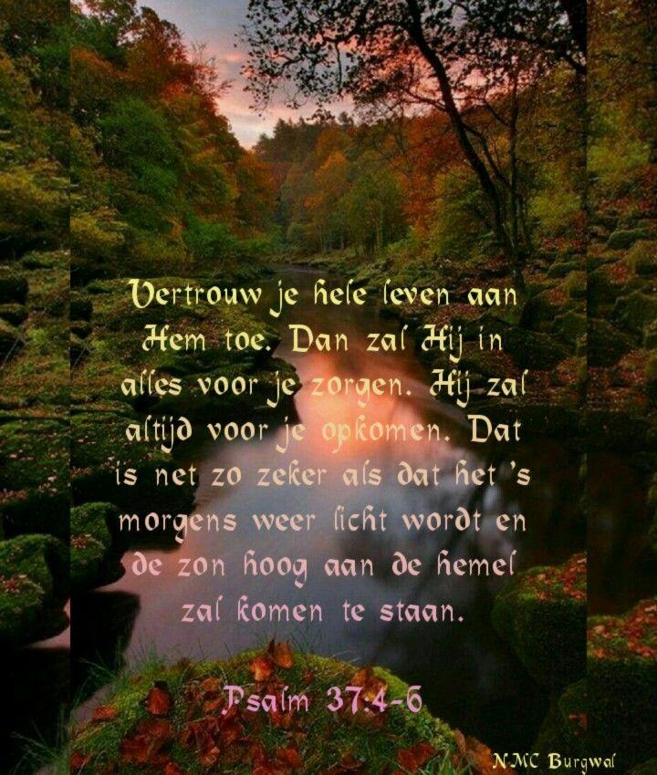 Psalm 37 : 4-6