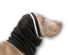 Speedog - Abrigos para perros, abrigos para deportes con perros, frio, nieve, lluvia,...