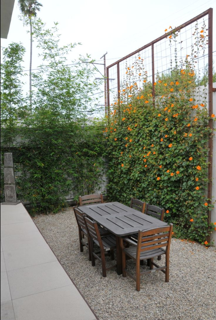 Trellis ideas for privacy - 507 Best Gardening Outdoor Ideas Images On Pinterest Gardens Landscaping And Small Gardens