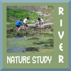 Ideas for nature study at a river, creek, or pond.