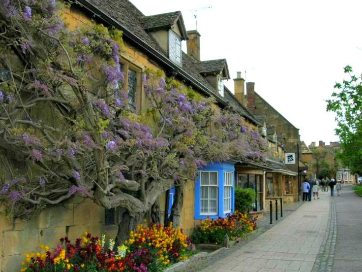Broadway / Cotswolds An old wisteria creeps along the honey coloured cottages in Broadway. https://farm9.staticflickr.com/8375/8537615804_dea06ae479_b.jpg