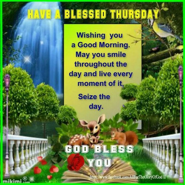 Good Morning Instagram World We Are Here Bright: Have A Blessed Thursday. ..