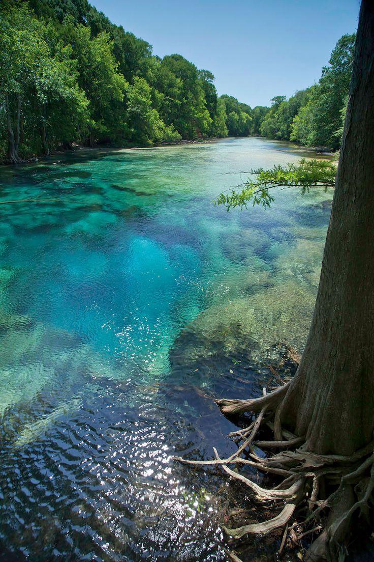 34 Best Cypress Spring Images On Pinterest Florida