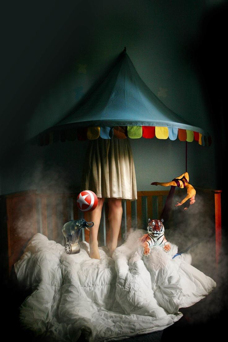 The Dream Circus