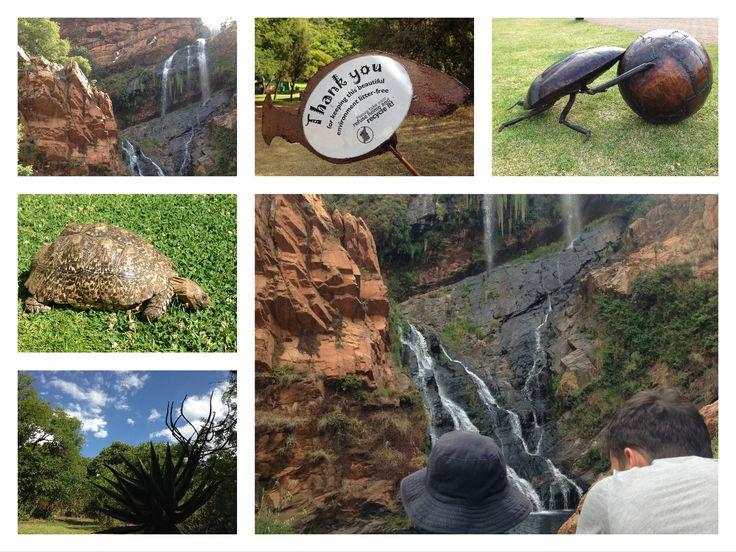 Walter Sisulu Botanic Garden, Gauteng, South Africa