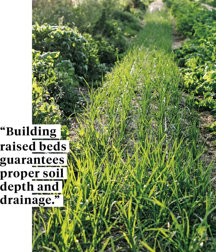 Designs For Raised Garden Beds Usi on