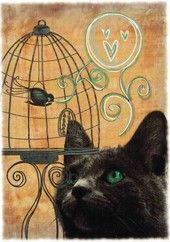 Kissa ja lintuhäkki (JR)   Perromania - pieni postikorttikauppa 0,90€