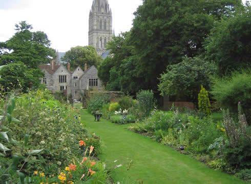 A Rejuvenation in Salisbury