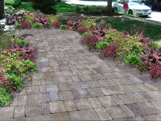 51 best ideas inspiration patios walkways images on for Plants for walkway landscaping ideas