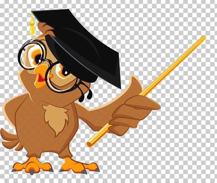 Owl Education Teacher Illustration Png Animals Bachelor Bachelor Cap Beak Bird Teachers Illustration Teacher Cartoon Owl Cartoon