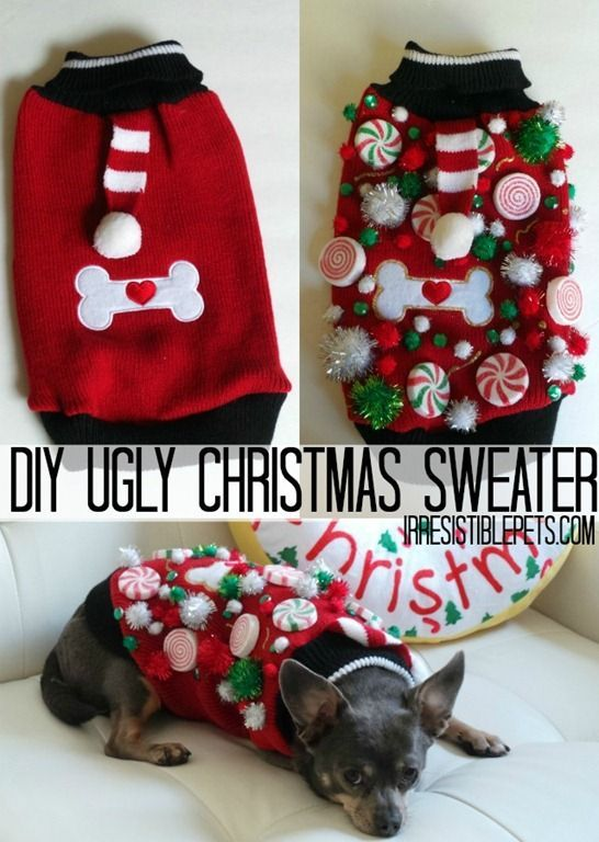 DIY Ugly Christmas Sweater for Dogs! Take your pet to your next ugly sweater party with this adorable hideous creation.