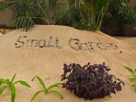 Garden Design Videos 78 best small garden design ideas images on pinterest | gardening