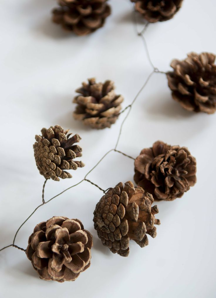 "pine cones + floral wire.. spray paint the cones first and add glitter while its drying.. then you have pretty ""frosted"" looking pine cones to use for the garland!"