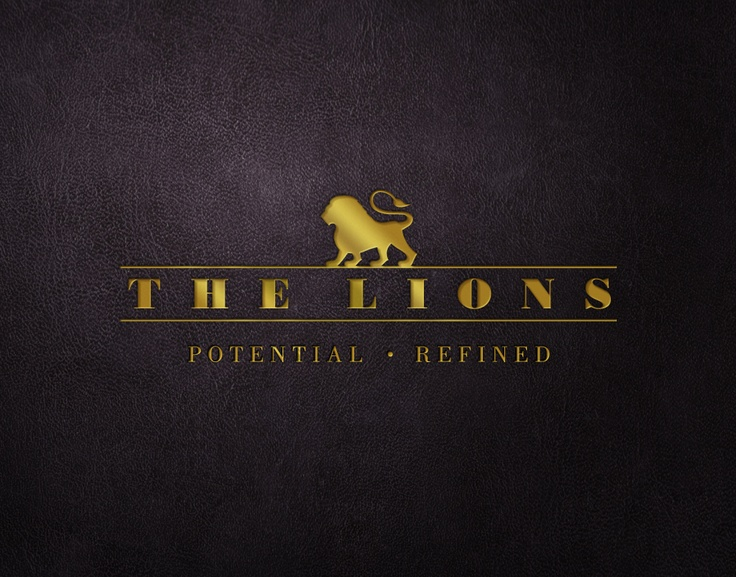 THE LIONS. An organisation set up to help guide, train, mentor and fund new business ideas that are of a charitable nature.