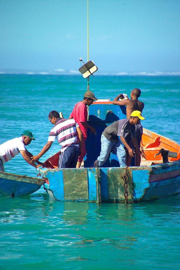 Fishermen in Struisbaai Harbour
