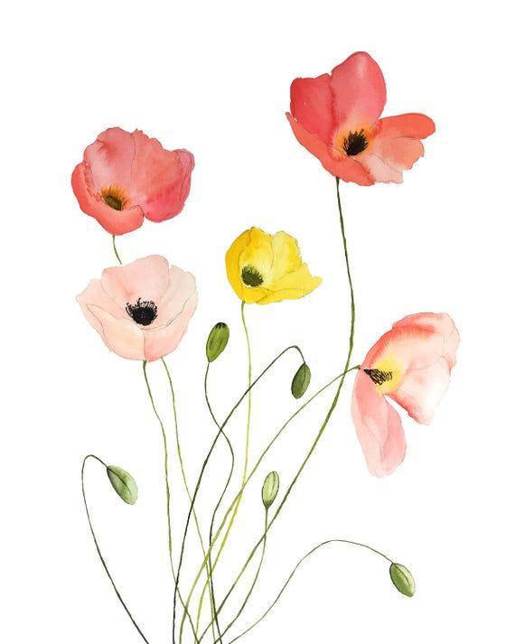 Ausmalbilder Blumenzeichnung Malvorlagen Blumen Blumenzeichnungen