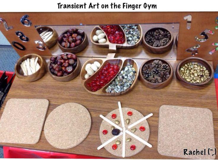 "Transient Art on the Finger Gym from Rachel ("",)"