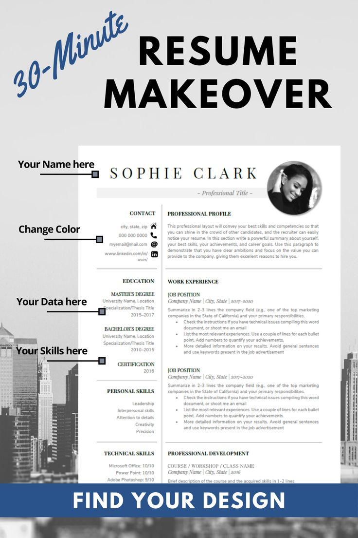 Good Resume Examples Professional Resume Template Word