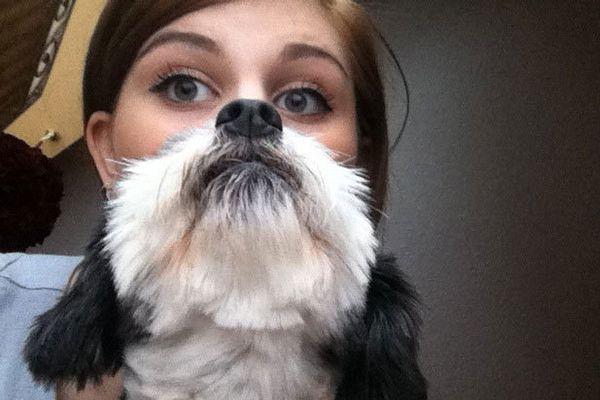 Dog Beard - The Greatest Animal Photobombs of All Time - Photos
