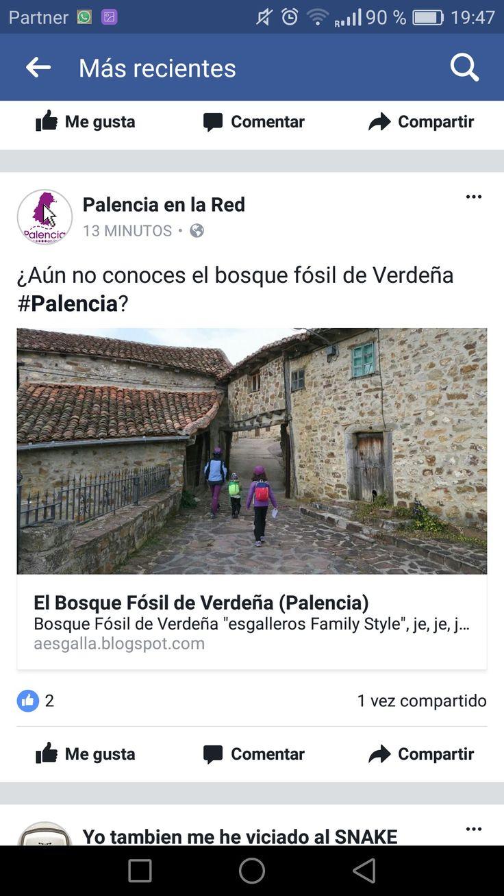 Bosque fósil de Verdeña, Palencia