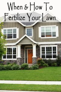 When & How to fertilize your own lawn. Step by step instructions