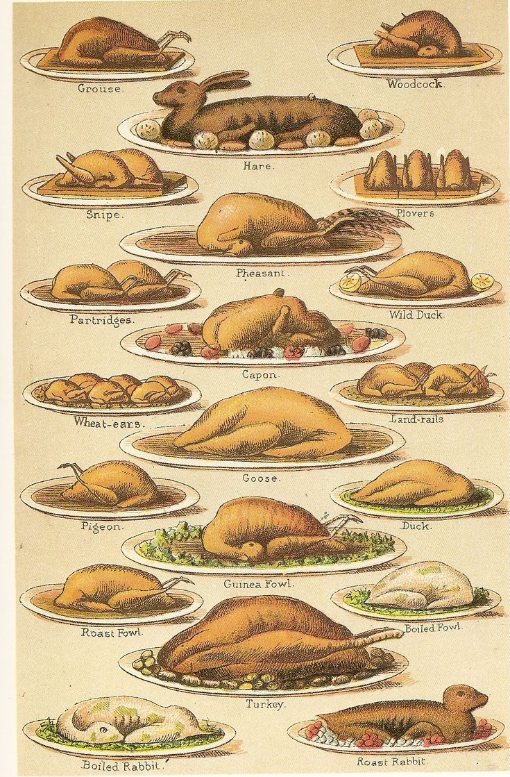 Victorian meat dishes by Mrs Beeton