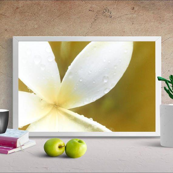 PRINTABLE art, Yellow Frangipani Print, Flower wall art, Alternative Anthotype, Digital download print, Instant download  Available From: $8.00 #Anthotype #Prints #Photography #DigitalPrints #Macro #PrintableArt #Alternative #InstantDownload #OrangeColors #GreenColors